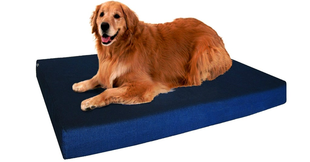 Retriever laying on the Dogbed4less dog bed