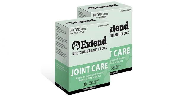Extend Nutritional Supplement for Dogs